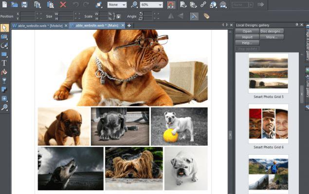 Xara Photo & Graphic Designer 17 & Clave de registro (Ultima versión)